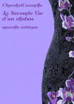 seconde-vie-dun-olisbos-chocolatcannelle-l-ub7pp6